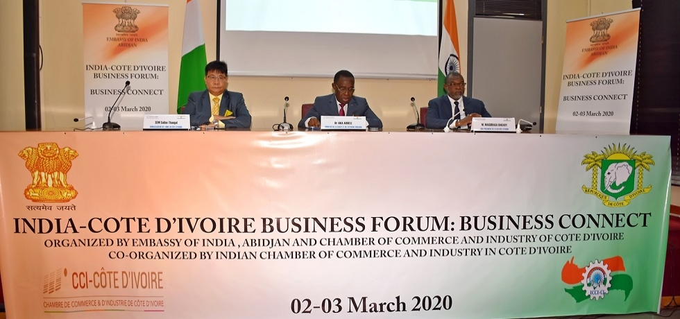 Minister of Health and Public Hygiene, H.E.Dr. Aouélé Eugène AKA, addressing at 1rst India-Cote d'Ivoire seminar on healthcare